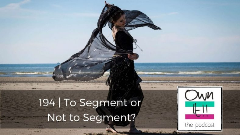 OwnIt! 194 | To Segment or Not to Segment?