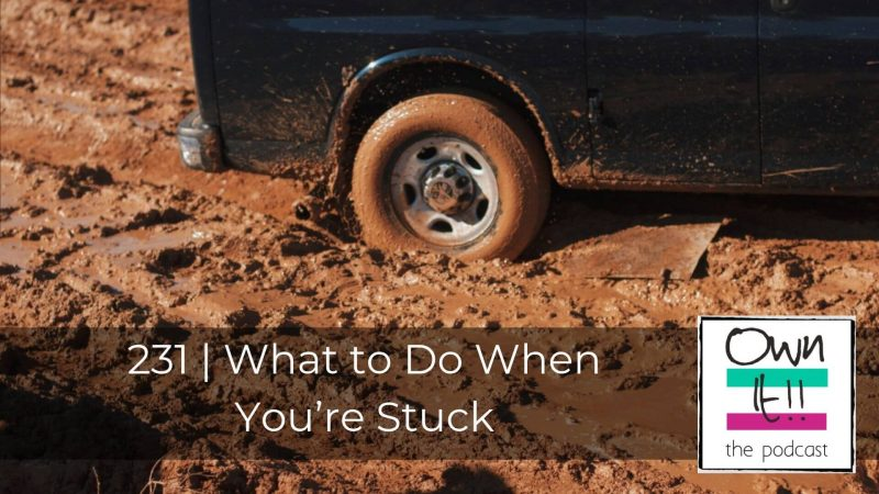 231 | What to Do When You're Stuck